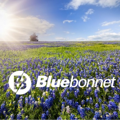 Bluebonnet CO-Op